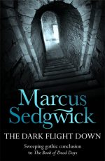 Uk cover of The Dark Flight Down showing steps descending into darkness.